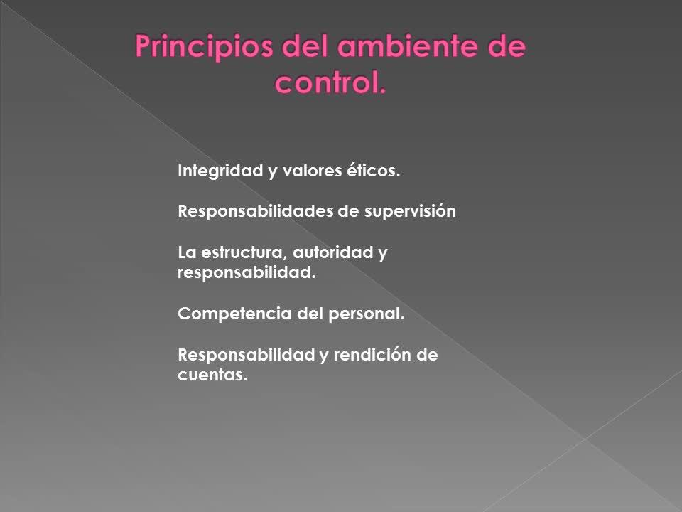3-Control Interno