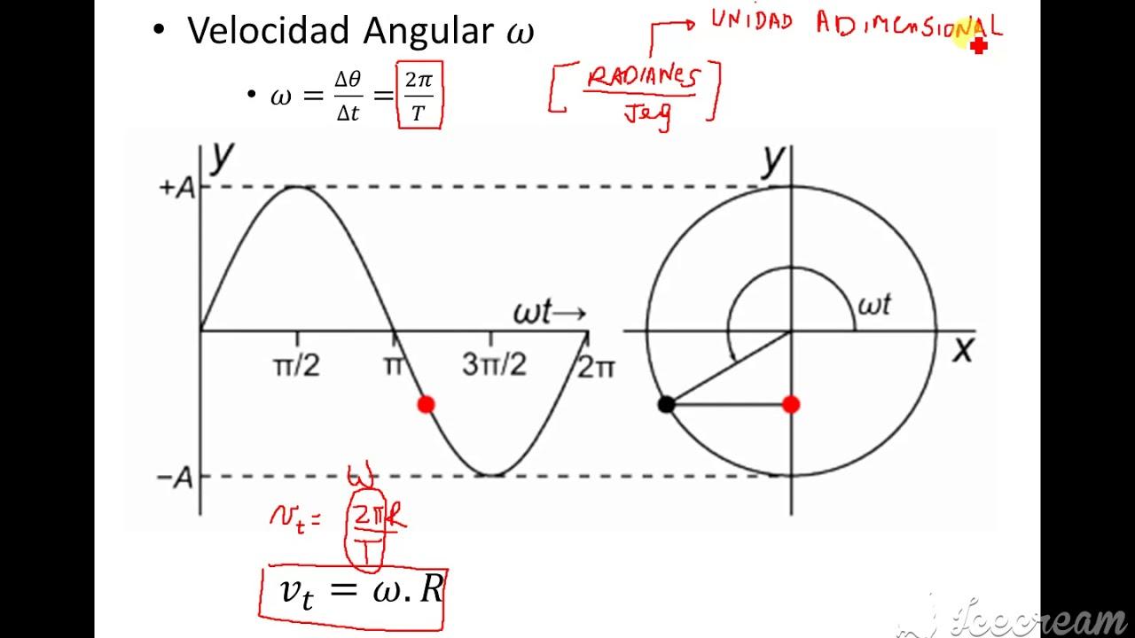 Clase 9 Física 1 INEL Dinámica del MCU Parte 4
