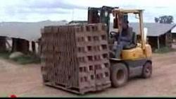 Fabricación de ladrillos comunes (1)