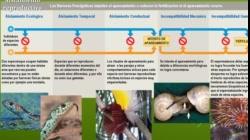 UNIDAD 4 BIOLOGIA UNM teoricas 2020 PARTE 3 VIDEO