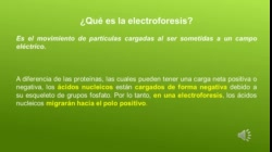 08 Extracción de ADN Deby  y corrida electroforética BIO UNM 2020 grabado