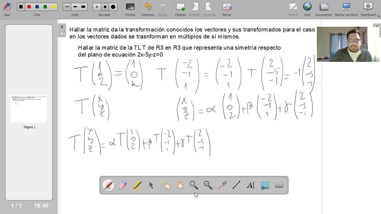 UNM - Hallar la matriz de la TL a partir de vectores que se transforman en múltiplos de sí mismos 1
