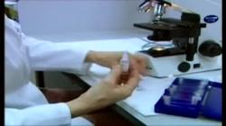 Técnicas Básicas en el Laboratorio de Microbiología. Microscopio óptico