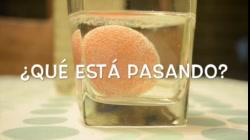 Práctica Ósmosis con huevo