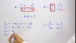 Multiplicación de matrices - Producto de matrices 2x2   Ejemplo 2
