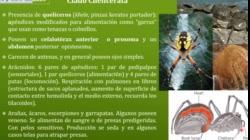 UNIDAD 7 BIOLOGIA UNM teoricas 2020 PARTE 3 VIDEO